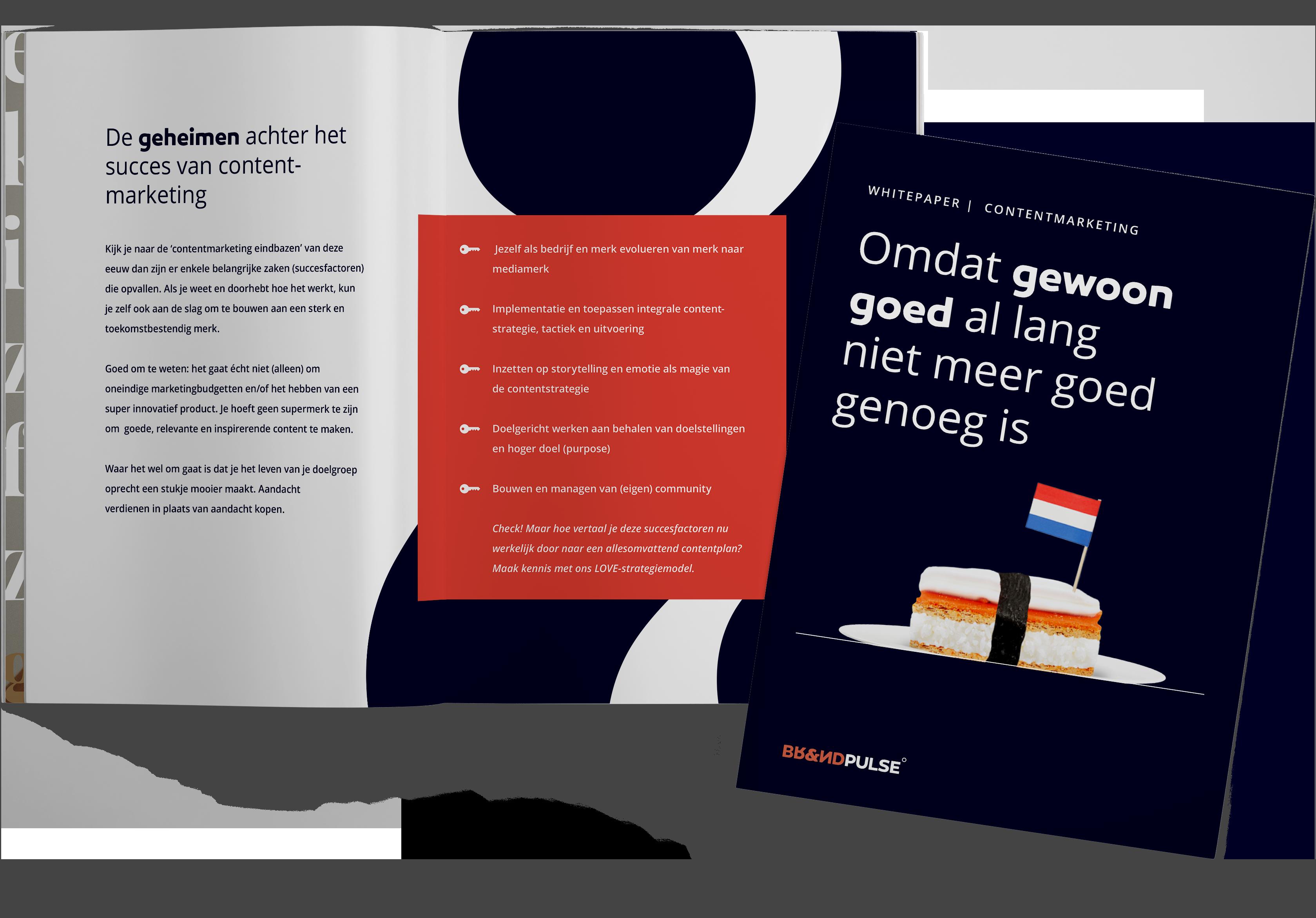 whitepaper contentmarketing Brandpulse